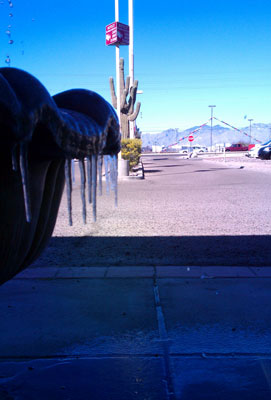 Icicles and Cacti