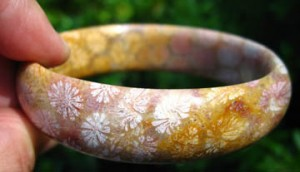 Judy Ellis's Gem Profile- Petoskey Stones and Indonesian Fossil Coral - , General Education, , Agatized Fossil Coral Agate Bangle