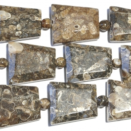 Turritella Agate Faceted Trapezoid Beads - 8 Inch Strand