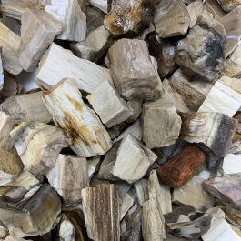 WireJewelry 1.5 lbs of Bulk Rough Petrified Wood Stone - Large Natural Rough Stone and Crystals for Tumbling