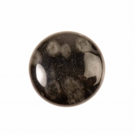 25mm Round Bull Eye Jasper Cabochon - Package of 1