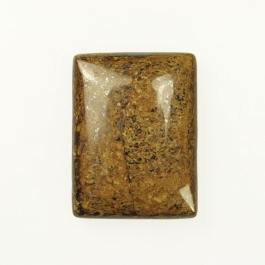 Bronzite 18x25mm Rectangle Cabochon