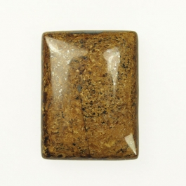 Bronzite 22x30mm Rectangle Cabochon - Pack of 1