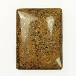 Bronzite 30x40mm Rectangle Cabochon