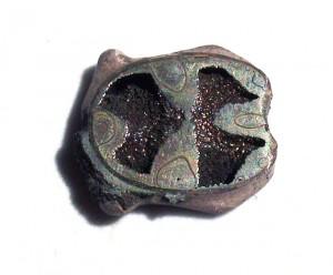 Pyrite Ammonite Chamber