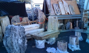 petrified wood slabs tucson shows