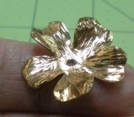 petal1
